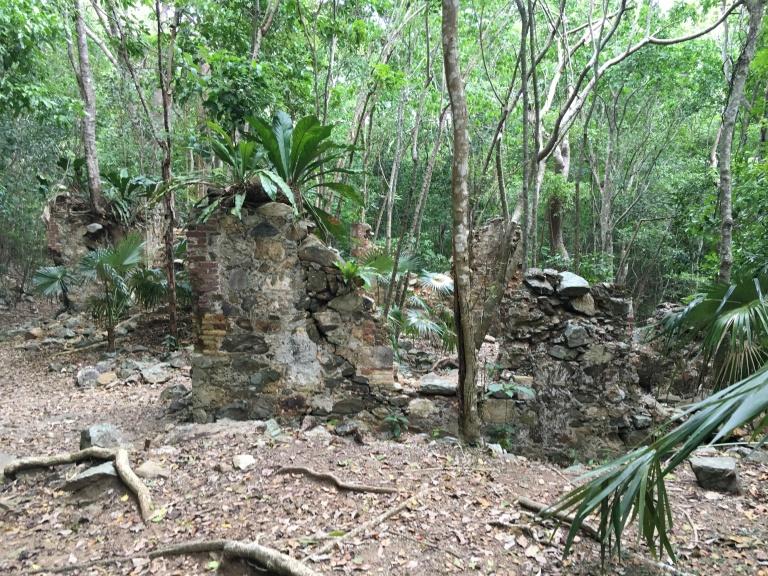 Reef Bay Trail 02